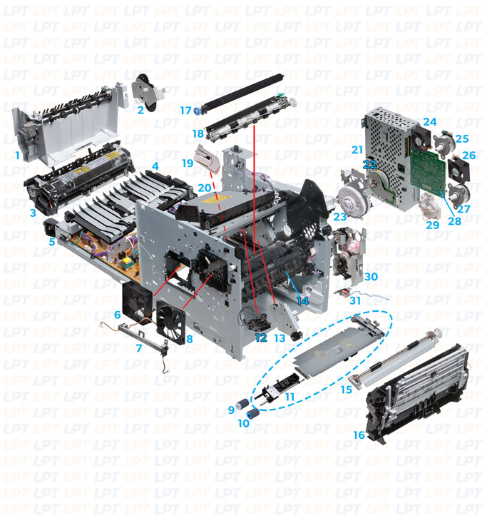 HP Printers M601-3 Diagram